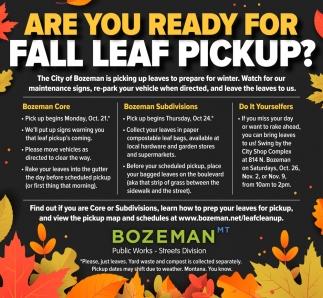 Fall Leaf PickUp