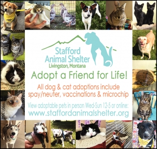 Adopt a Friend for Life