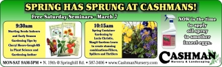 Spring Has Sprung at Cashmans!